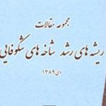 معرفی کتاب «مجموعه مقالات ریشه های رشد شاخه های شکوفایی »